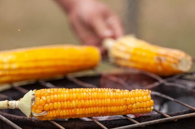 ブラジルの屋台の食べ物ブラジル北東部で非常に人気のあるグリルで焼いたトウモロコシ