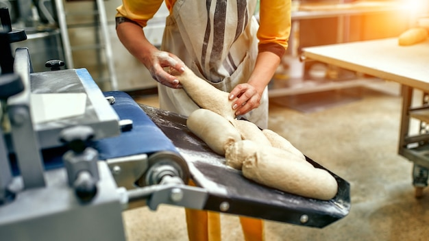 Bread bakery food factory production with fresh products. automated production of bakery products.