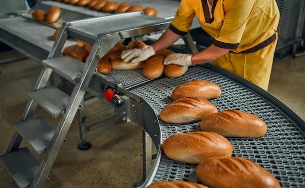 신선한 제품으로 빵 빵집 식품 공장 생산. 베이커리 제품 자동 생산.