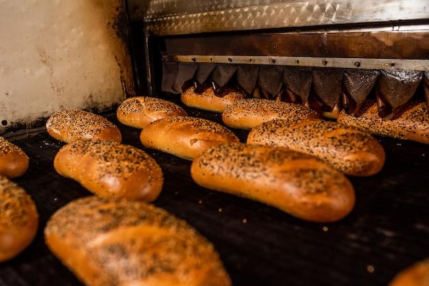 パン。パンの生産ライン。コンベア上のパン。