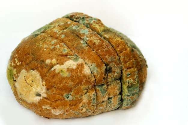 Хлеб покрытый плесенью, куча испорченного пшеничного хлеба. крупным планом фото образца разноцветной плесени.