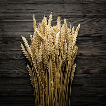 Bread spikelets on a wooden table. view overhead. agriculture concept