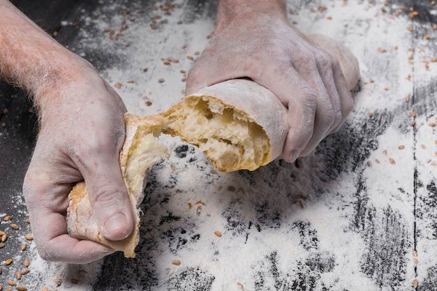 Breaking fresh bread. baking and cooking concept. hands tearing apart loaf on rustic wooden table sprinkled with flour. stained dirty hands of baker. soft toning