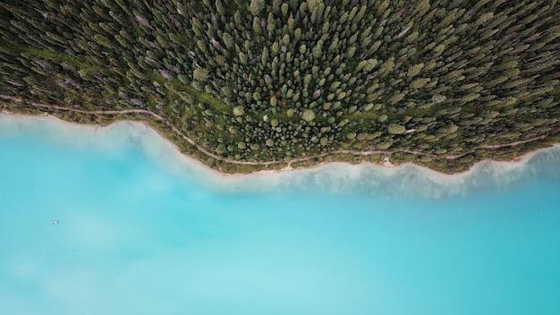 海の岸にある美しい森の息をのむような空中ドローンショット