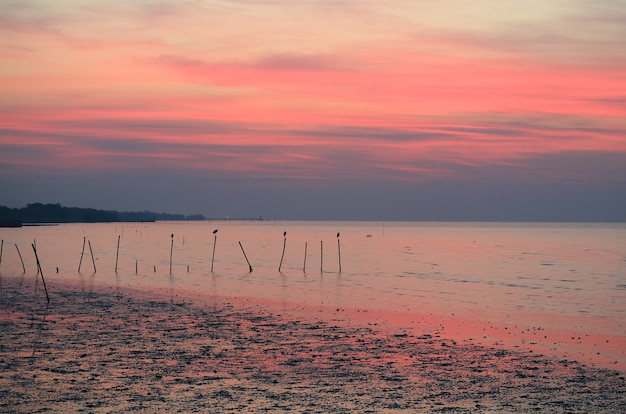Breathtaking blue and pink color sunrise sky over the calm sea of gulf of thailand