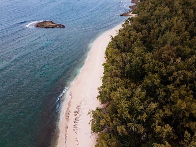 Paesaggio mozzafiato delle hawaii con la spiaggia