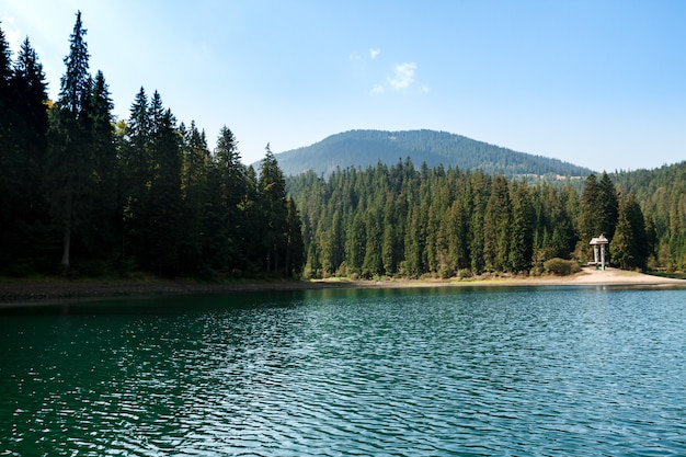 Breathtaking landscape of lake high in carpathian mountains