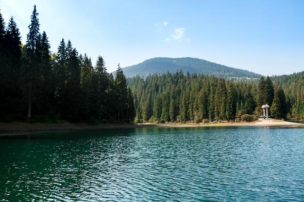 Захватывающий пейзаж озера высоко в карпатах