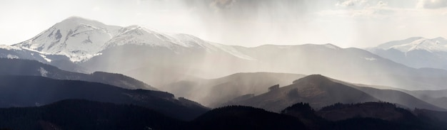 안개가 자욱한 조용한 아침이나 저녁에 어둡고 흐린 하늘 아래 상록수 숲으로 덮인 장엄한 안개가 자욱한 카르파티아 산맥의 숨막히는 탁 트인 전망. 멀리 산 눈 덮인 정상.