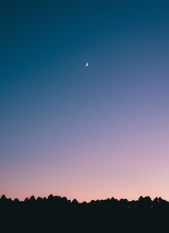 Breathtaking shot of a crescent moon in the middle of a blue sky with silhouettes of trees below