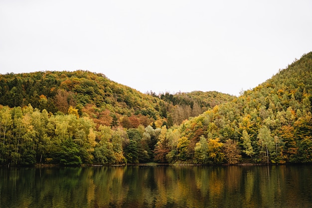Breathtaking shot of a lake next to a mountainous forest in autumn with the sky in the background