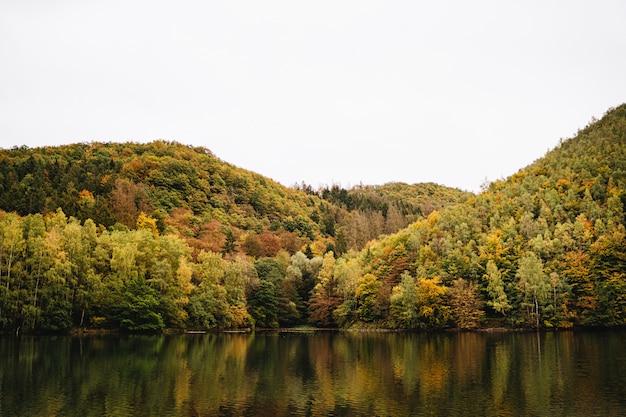 백그라운드에서 하늘이 가을에 산 숲 옆에있는 호수의 아름다운 샷
