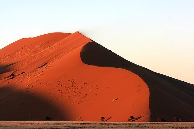 ナミビアの日光の下でソーサスフライ砂漠の砂丘の息を呑むようなショット