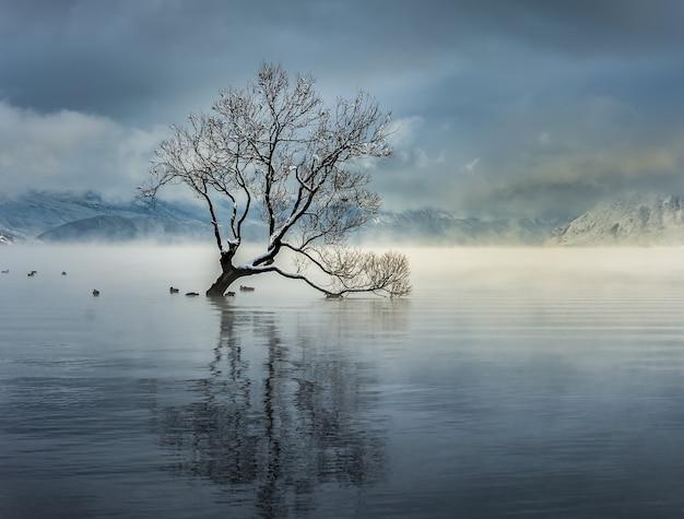 ニュージーランド、ワナカ村のワナカ湖の息を呑むようなショット