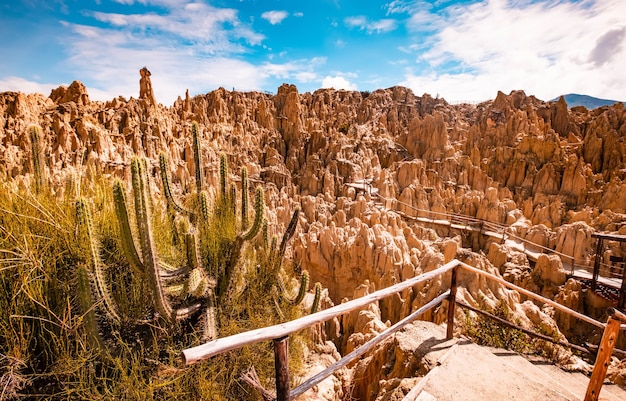 전경에 선인장이 있는 볼리비아 라파스 근처의 숨막히는 햇살 달 계곡 바위 풍경
