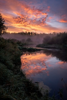 Breathtaking view of a forest and a river gleaming under the sunset piercing through the cloudy sky