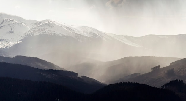 Breathtaking view of magnificent foggy carpathian mountains, covered with ever-green forest on misty quiet morning or evening under dark cloudy sky. mountains tops covered with snow in distance.