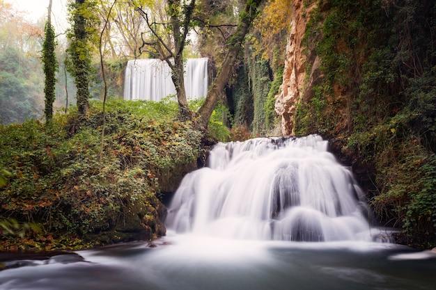 Захватывающий вид на водопад, проходящий через красивый лес, сделанный в пасмурный день.