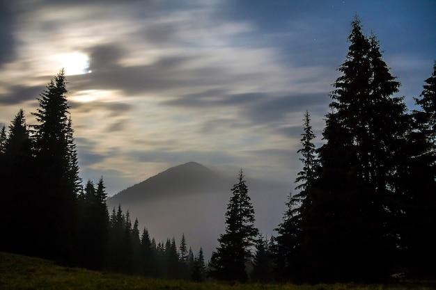 霧の深い静かな朝または夕方、暗い曇り空の下で常緑樹の森に覆われた壮大な霧のカルパティア山脈の息をtakingむような景色。自然概念の美しさ。