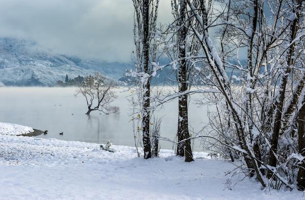 뉴질랜드 와나카 마을의 와나카 호수의 숨막히는 전경