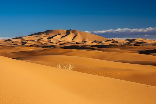 Breathtaking view of sand dunes in the desert with the clear blue sky