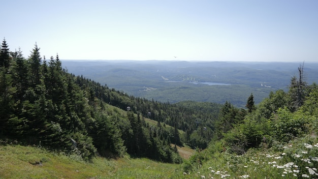 Breathtaking view of tree covered mountains in mont tremblant national park in lac lajoie, canada