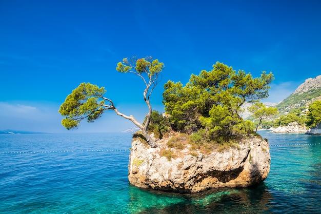 푼타 라타 해변 근처 brela rock, makarska riviera, croatia