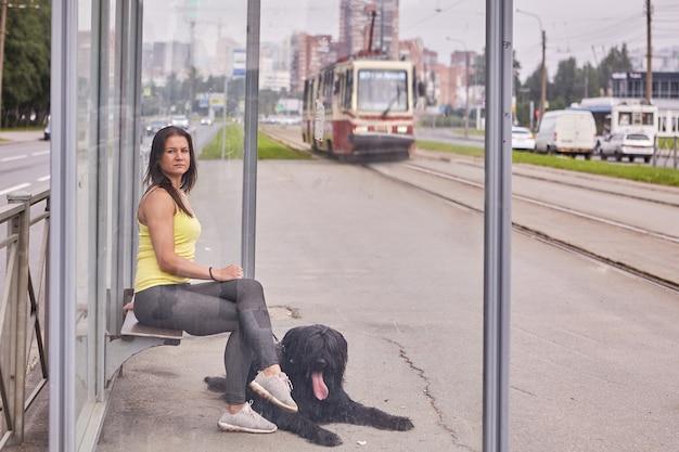 Briard와 여성 소유주는 낮에 대중 교통 정류장에 앉아 트램을 기다리고 있습니다.