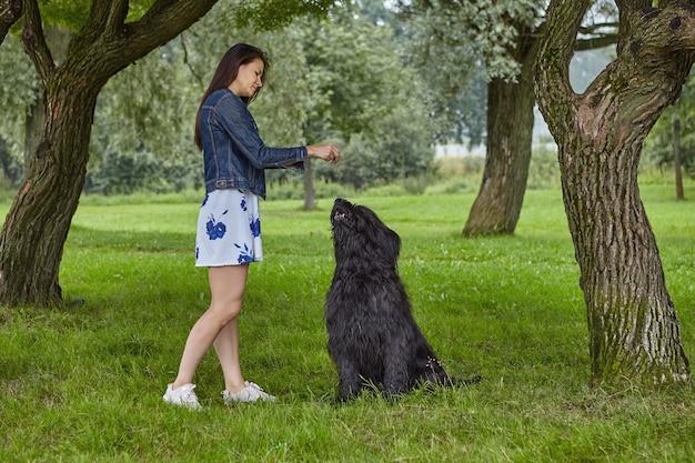 Briard는 공공 공원에서 산책하는 동안 주인에게 훈련을받습니다.