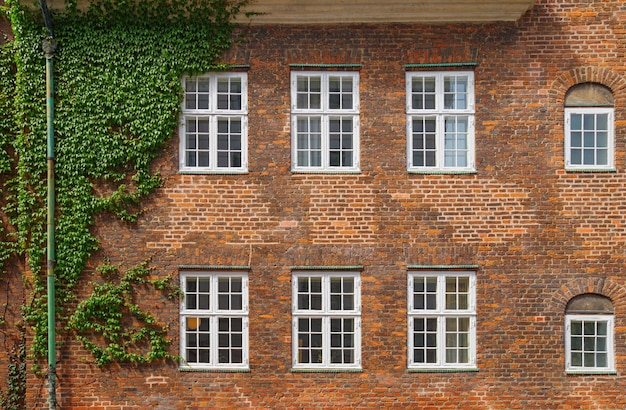Brick building wall with six windows in copenhagen