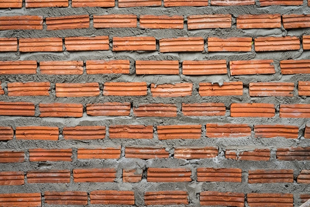 Brick wall with fresh cement close up