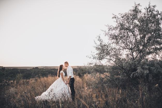 牧草地を歩く新郎新婦