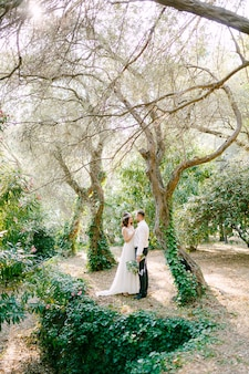 The bride and groom are hugging among picturesque trees covered with ivy in the park