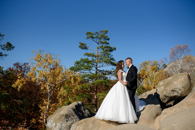 The bride and groom are hugging on top of a cliff.