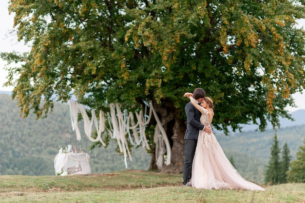 The bride and groom celebrate their wedding in the mountains. wedding photography. wedding ceremony for two.