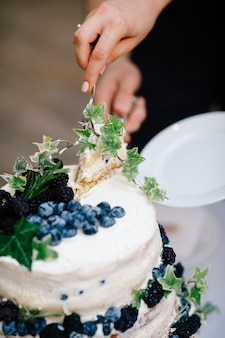 Bride and groom cut wedding cake with blueberries