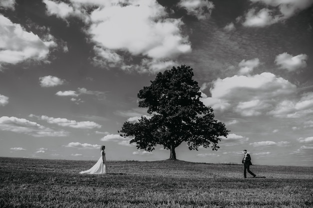 The bride and groom go towards each other in a field near an old oak tree.
