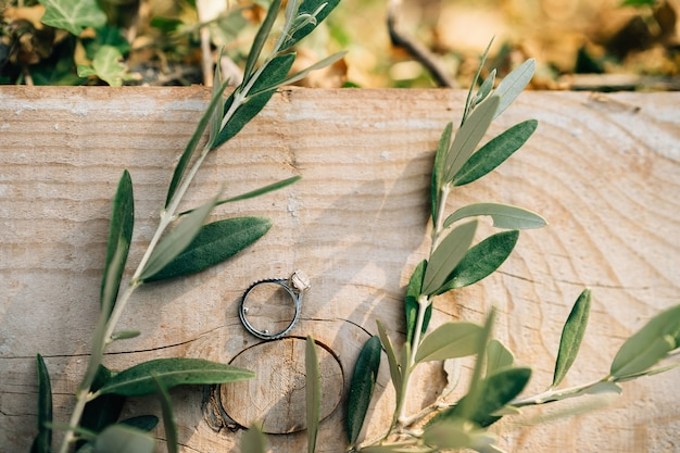 Brides engagement ring with a gem on a wooden board with sprigs of an olive tree