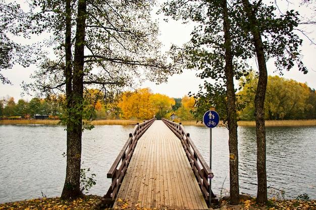 公園で歌を橋渡しする