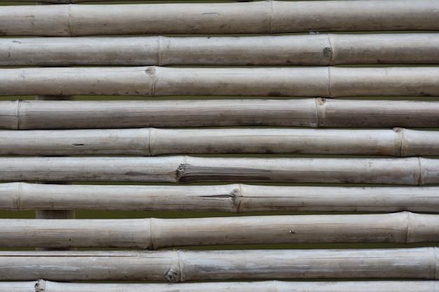 Мост для коридоров из бамбука. бамбук текстуры фона