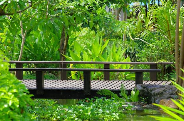Bridge on green nature
