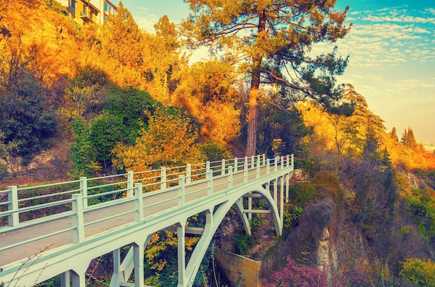 ジョージア州トビリシの秋の植物園の橋