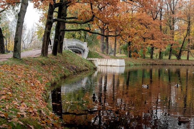 ロシアのサンクトペテルブルクの近くのプーシキン市の秋の公園の橋
