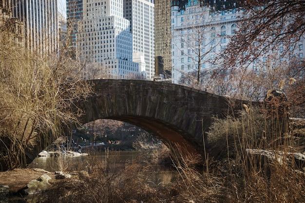 中央公園の橋