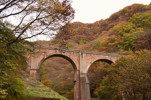 日本の碓氷峠安中の橋