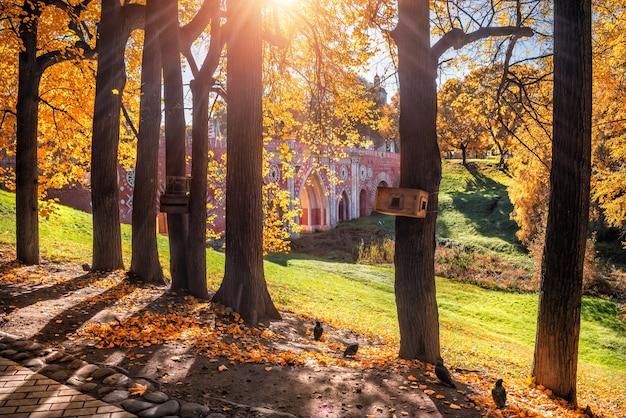 가을 날 모스크바의 tsaritsyno 공원에 있는 다리