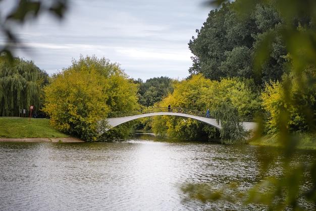 Bridge over the lake in the publuc park in summer