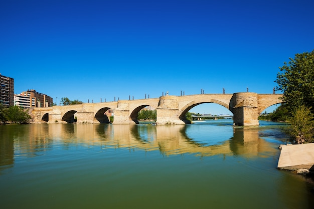 Bridge of lions over ebro river
