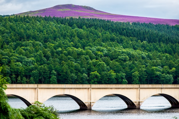 Bridge over lower derwent reservoir peak district, england