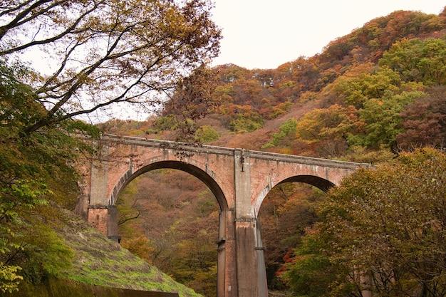 Bridge in the usui pass annaka in japan